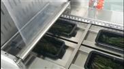 小康气调水果蔬菜包装机