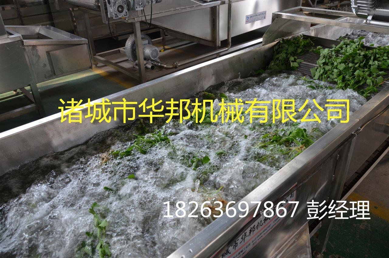 华邦全304不锈钢蔬菜水果清洗风干流水线