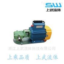 S型小型齿轮泵