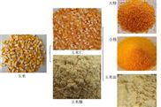 新型玉米脱皮制糁机 玉米碴子机厂家
