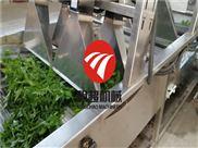 MCQXX-20-中央厨房菜品加设备 蔬菜净菜加工流水线