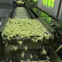 SJ-3-蕨菜殺菌機,辣菜低溫滅菌流水線