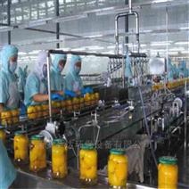 厂家定制水果罐头微波杀菌设备