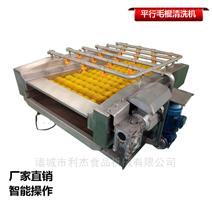 生蚝蛤蜊全自动高压喷淋式平行毛棍清洗设机