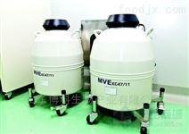 美国MVE液氮罐XC47/11-10价格