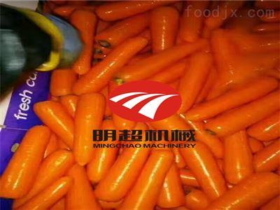 QZM-6胡萝卜清洗抛光威尼斯人棋牌一台多少钱