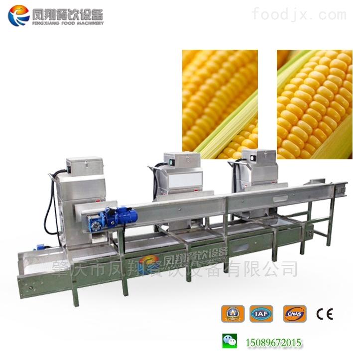 玉米脫粒機 玉米去粒機生產線
