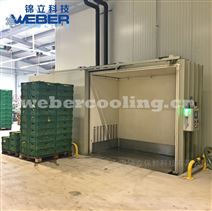上海锦立果蔬真空冷却机 蔬菜真空预冷机