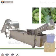 WA-1000大型洗菜机