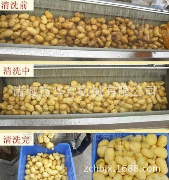 土豆毛辊清洗去皮机 专业根茎清洗 去皮设备