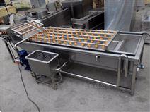 气泡清洗机 蔬菜食品加工生产线