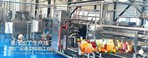 百香果汁加工生产线设备