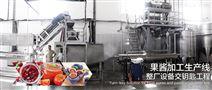 凤梨汁加工生产线设备