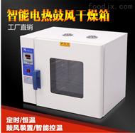 HK-350A+不锈钢定时定温智能干燥箱