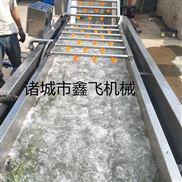 果蔬清洗机  水果蔬菜清洗机  清洗机厂家