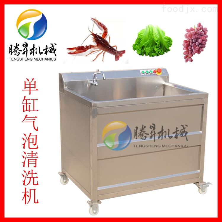 单槽臭氧洗菜机 香菇菌类气泡清洗机