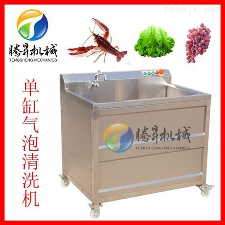 气泡式清洗机 果蔬洗菜机