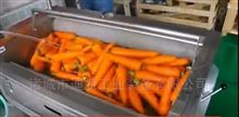 胡萝卜清洗流水线