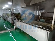 蔬菜配送中心蔬菜清洗机 多功能洗菜机