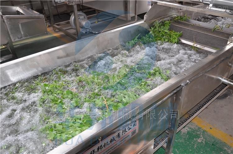 供应华邦牌 气泡果蔬清洗设备 食品机械厂家