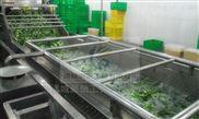 净菜清洗机/果蔬净菜加工流水线