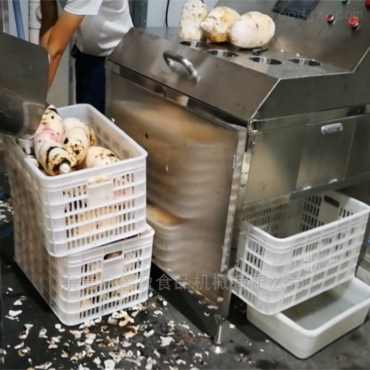 DY-2800-果蔬蔬菜土豆芋头大型清洗去皮机,德盈机械