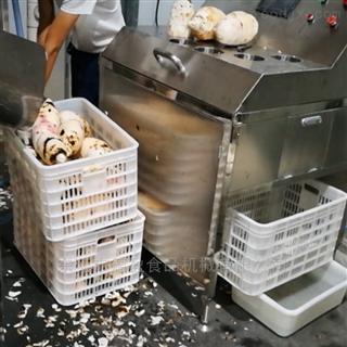 DY-2800果蔬蔬菜土豆芋头大型清洗去皮机,德盈机械