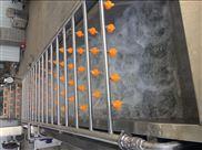 果蔬加工厂专用全自动果蔬臭氧洗菜机