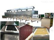 五谷杂粮烘焙熟化机器