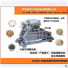 XLR-QP50A全自动大型绿豆膨化机