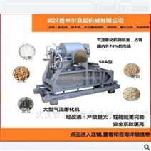 全自动大型绿豆膨化机