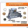 新型全自动大型绿豆膨化机