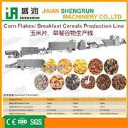 TSE65谷物玉米片休闲食品生产设备