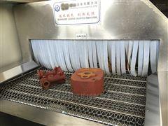 蔬菜大枣清洗流水线网带