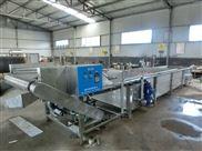 水果蔬菜清洗機 生產廠家