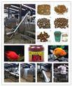 大型鱼饲料膨化机生产线