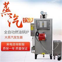 蒸汽发生器天然锅炉全自动高效锅炉
