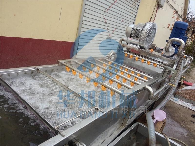 毛豆金针菇菌类气泡清洗设备 土豆清洗机