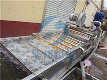 粽叶清洗机 蔬菜清洗加工生产线