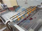 HB3500ZQ果蔬清洗风干沥水机 净菜加工生产线