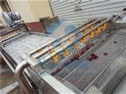 果蔬清洗风干沥水机 净菜加工生产线