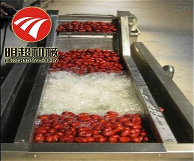 QZM-4新疆骏枣清洗机多功能大枣生产线自动清洗
