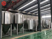 精酿300L餐饮啤酒设备