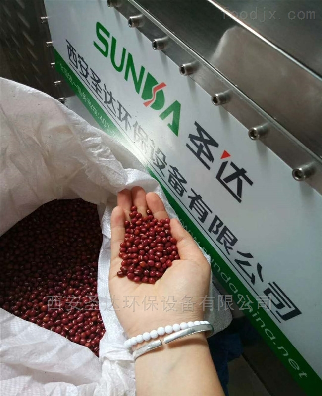 西安圣达红豆熟化设备厂家