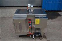 36KW蒸汽发生器 全自动电加热锅炉 小型轻便