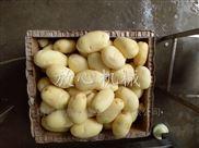 新型土豆清洗去皮机