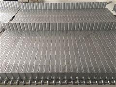 挡板式冲孔不锈钢链板