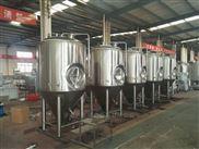 1吨精酿啤酒生产线