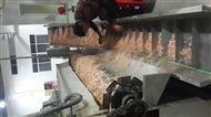 虾皮专用烘干生产线