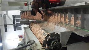蝦皮專用烘干生產線